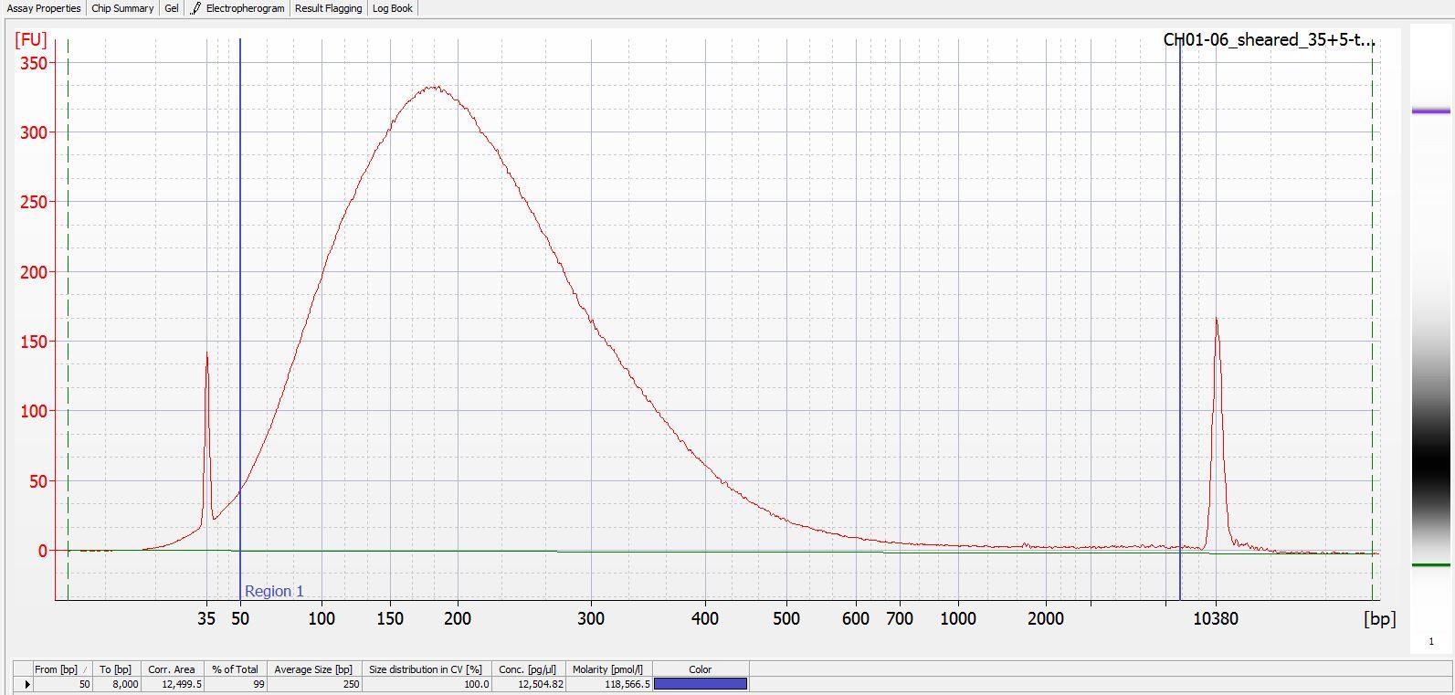 Sheared CH01-06 Bioanalyzer electropherogram