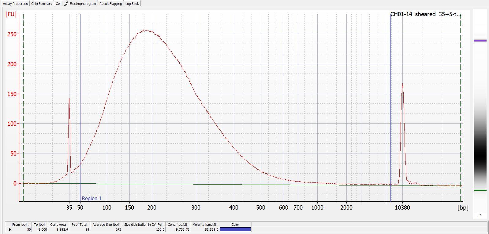 Sheared CH01-14 Bioanalyzer electropherogram
