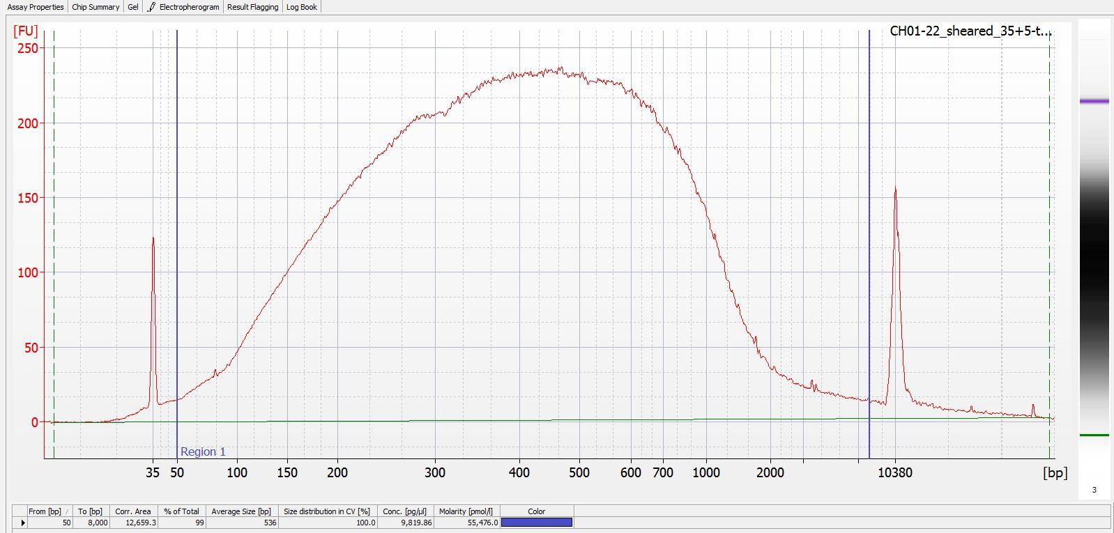 Sheared CH01-22 Bioanalyzer electropherogram