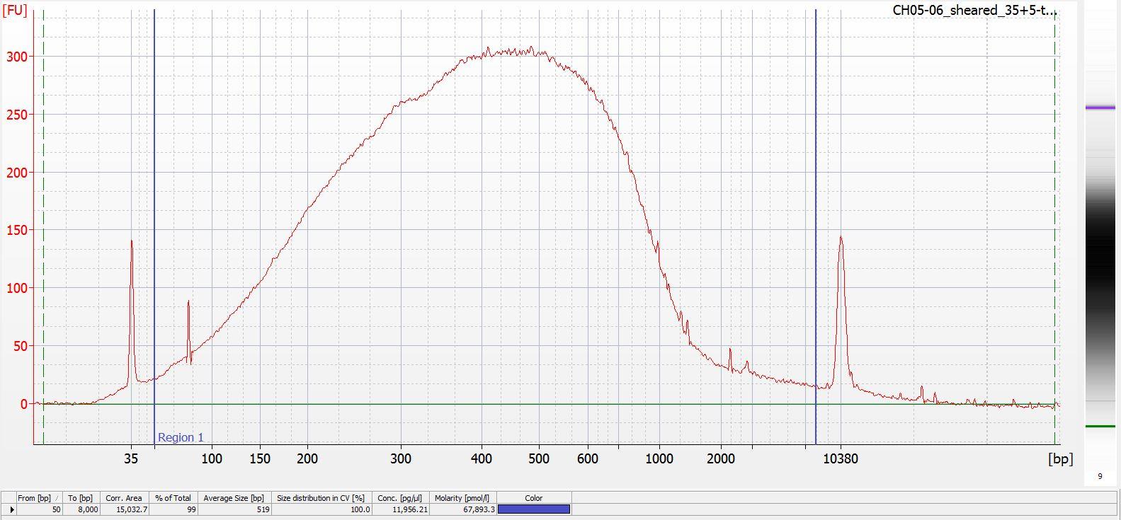 Sheared CH05-06 Bioanalyzer electropherogram