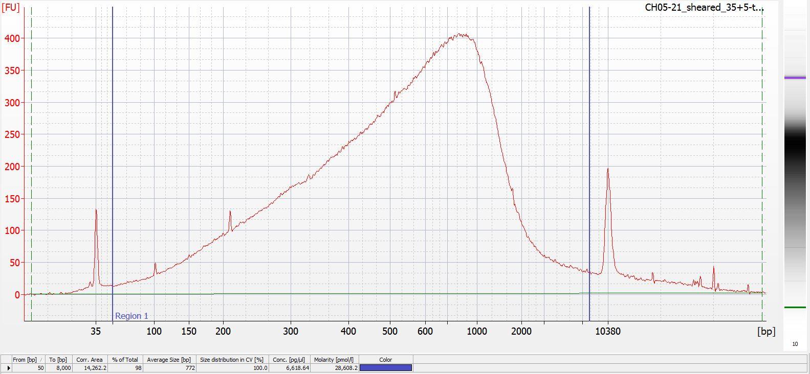 Sheared CH05-21 Bioanalyzer electropherogram