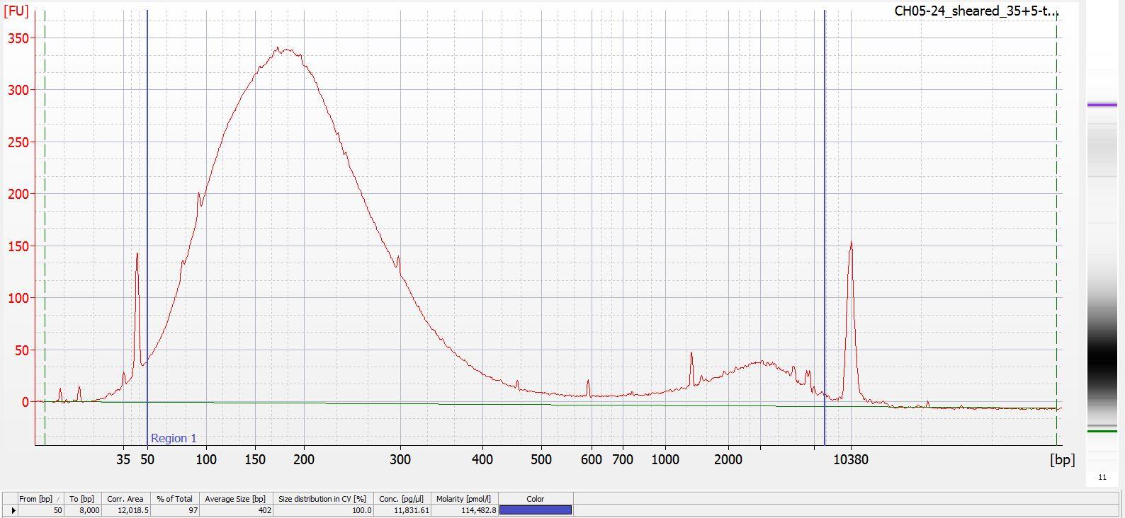 Sheared CH05-24 Bioanalyzer electropherogram