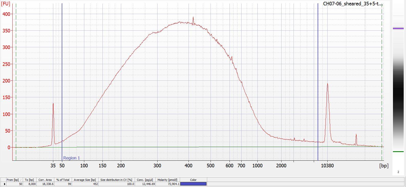 Sheared CH07-06 Bioanalyzer electropherogram