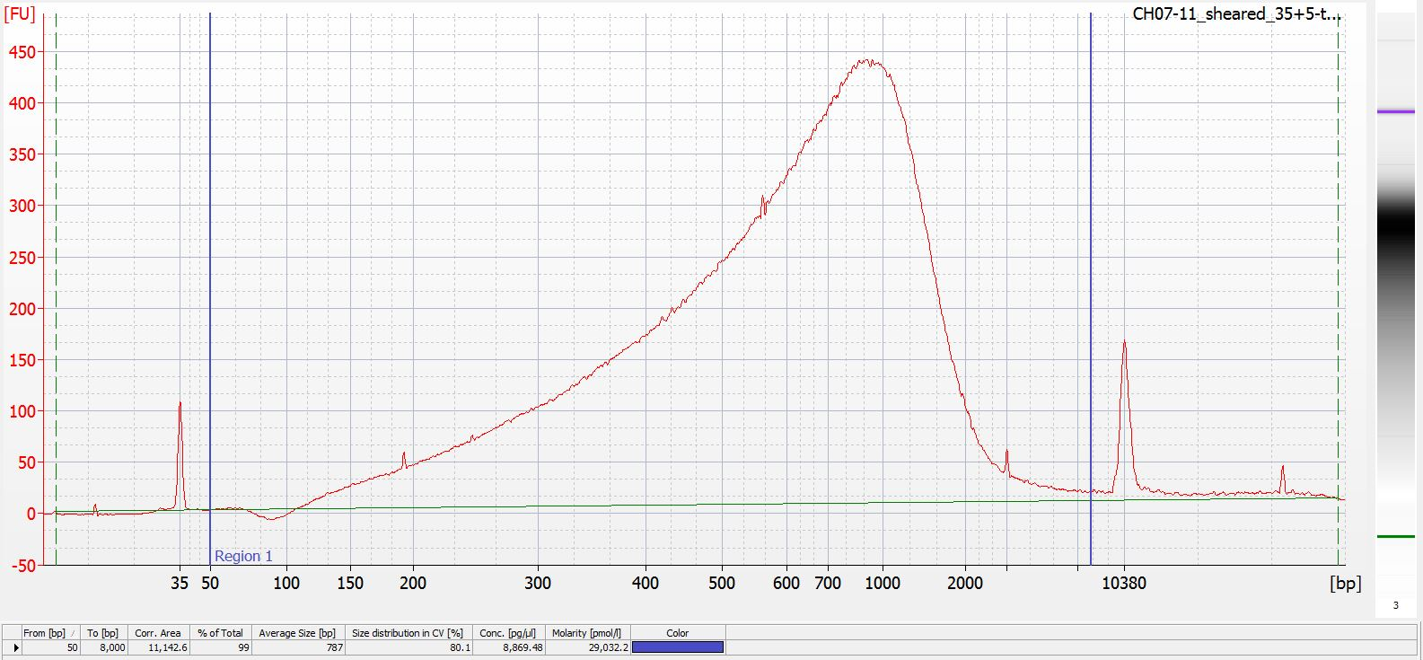 Sheared CH07-11 Bioanalyzer electropherogram