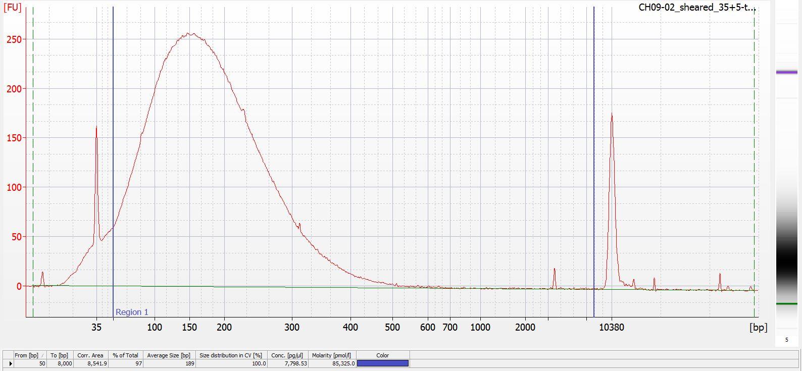 Sheared CH09-02 Bioanalyzer electropherogram