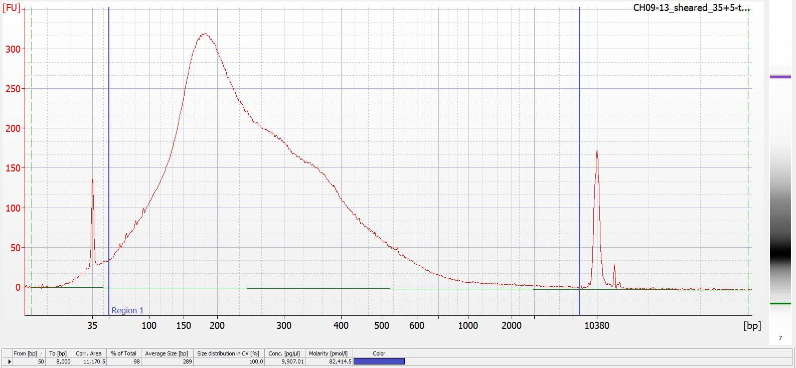 Sheared CH09-13 Bioanalyzer electropherogram