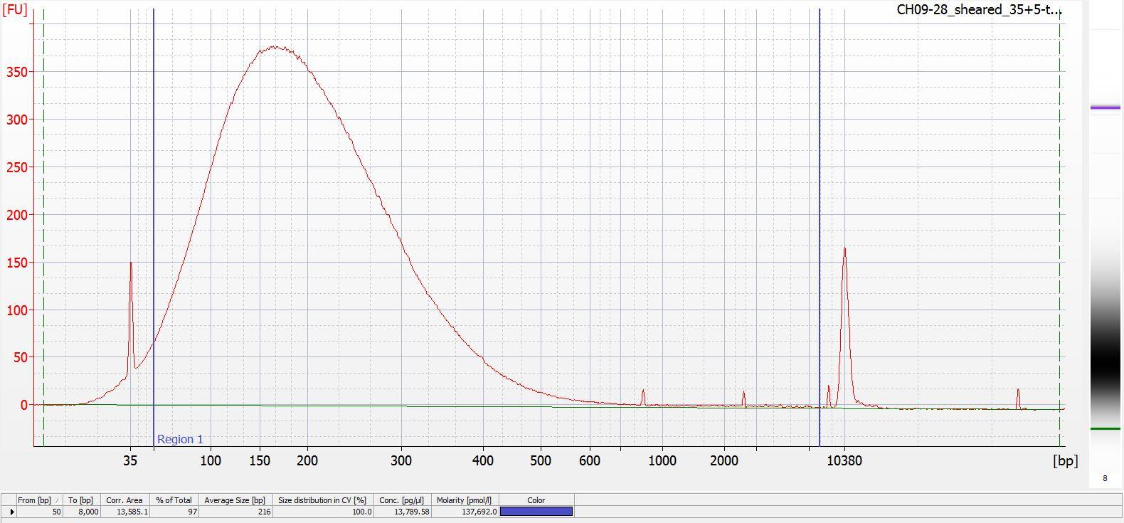 Sheared CH09-28 Bioanalyzer electropherogram
