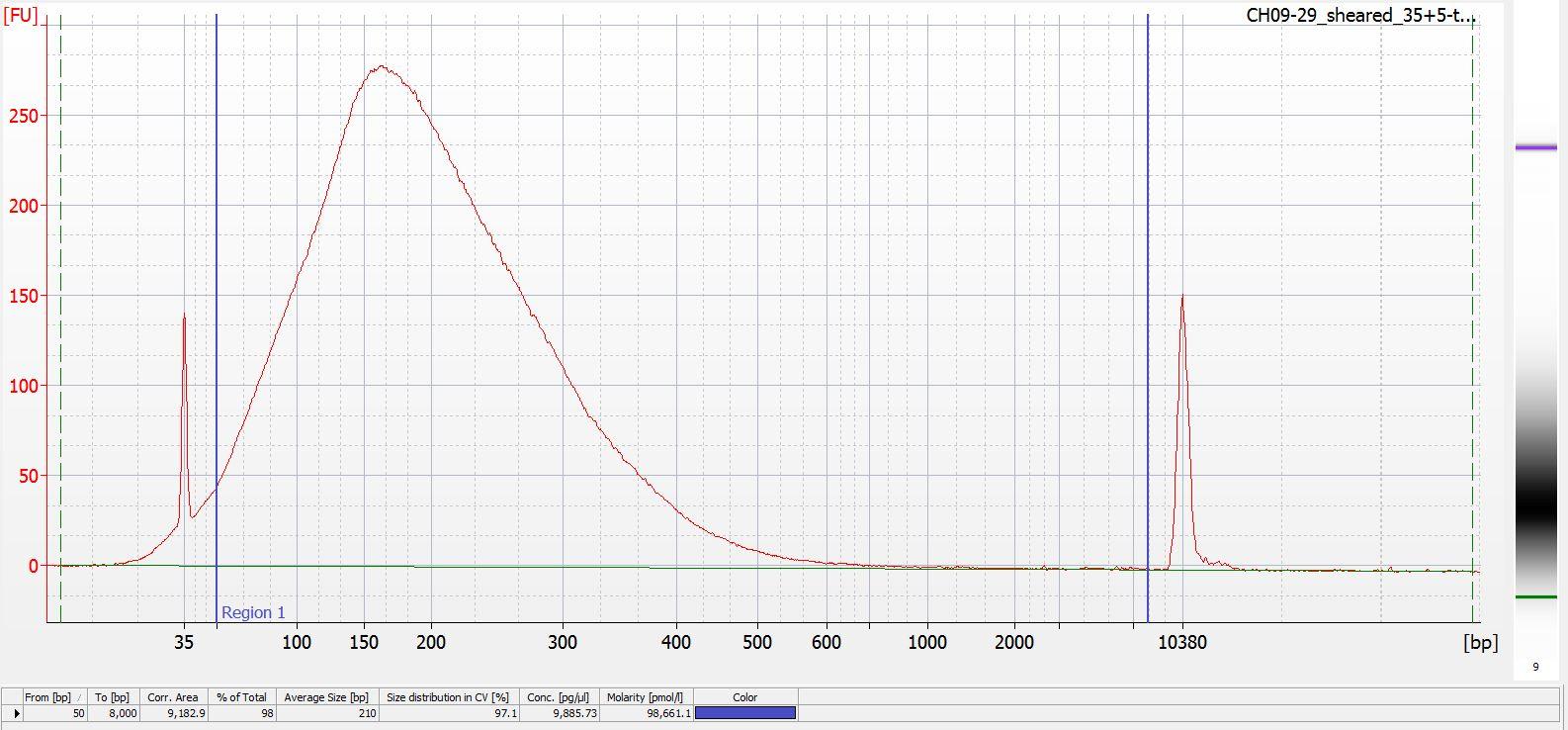 Sheared CH09-29 Bioanalyzer electropherogram