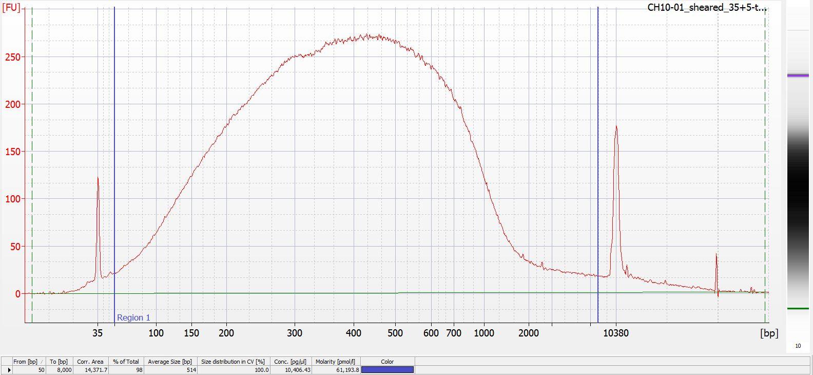 Sheared CH10-01 Bioanalyzer electropherogram