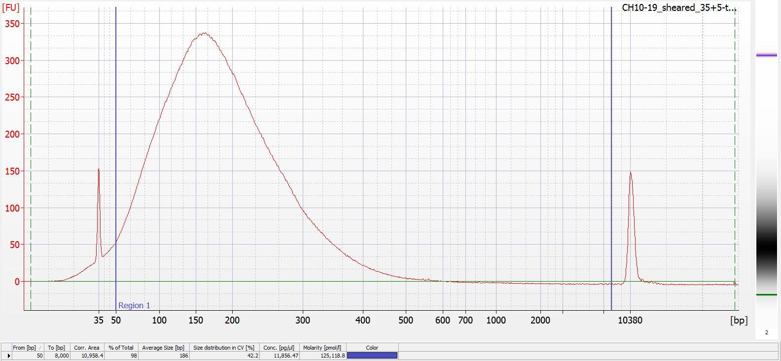 Sheared CH10-19 Bioanalyzer electropherogram