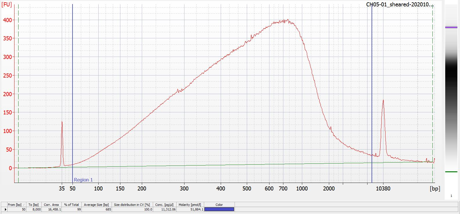 Sheared CH05-01 Bioanalyzer electropherogram
