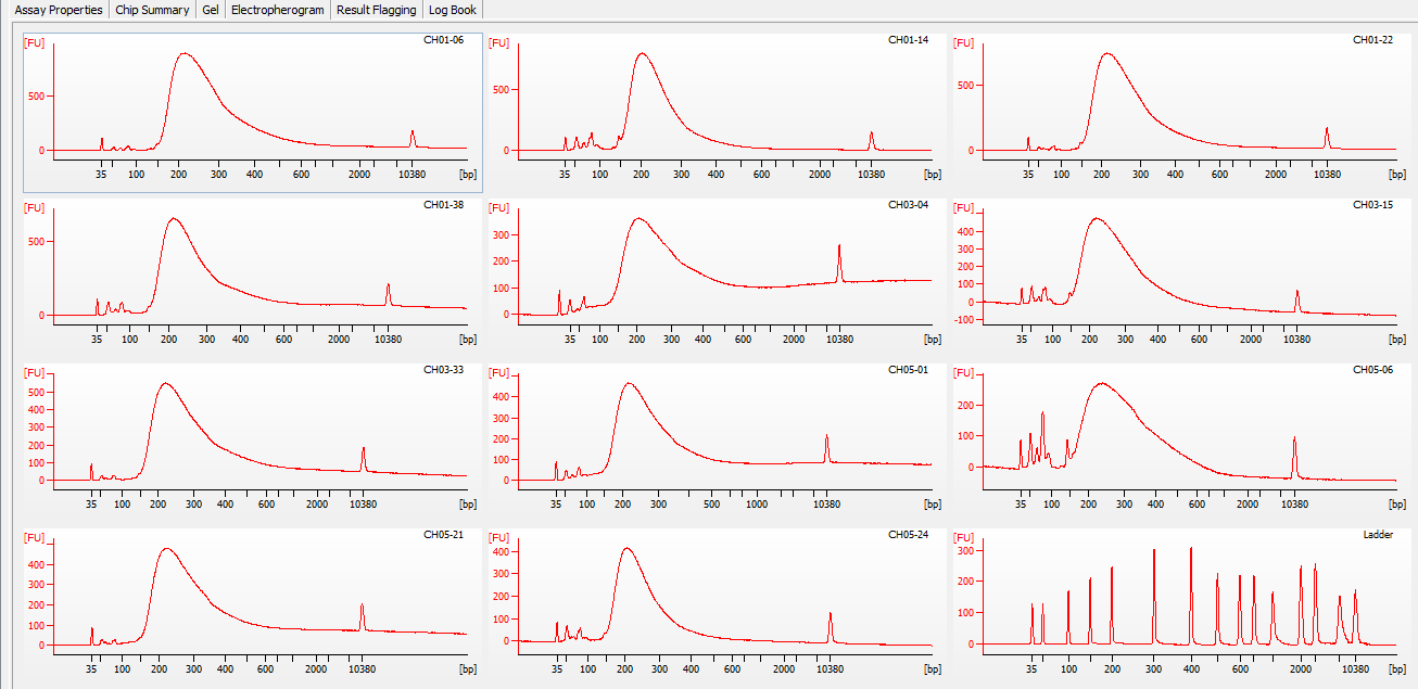 Bioanalyzer electrophergrams for all samples in DE72902486_2020-11-25_05-16-07