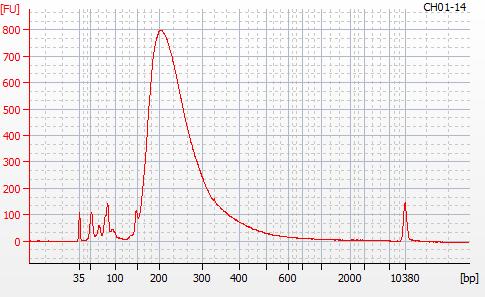 Bioanalyzer 2100 electropherogram for MBD BSseq library CH01-14