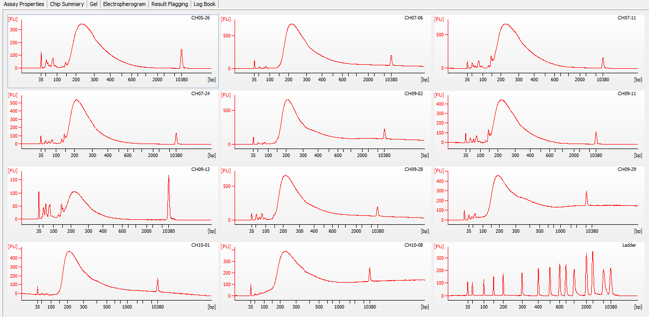 Bioanalyzer electrophergrams for all samples in DE72902486_2020-11-25_06-12-38