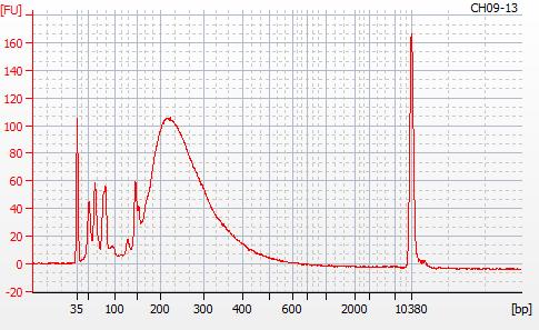 Bioanalyzer 2100 electropherogram for MBD BSseq library CH09-29