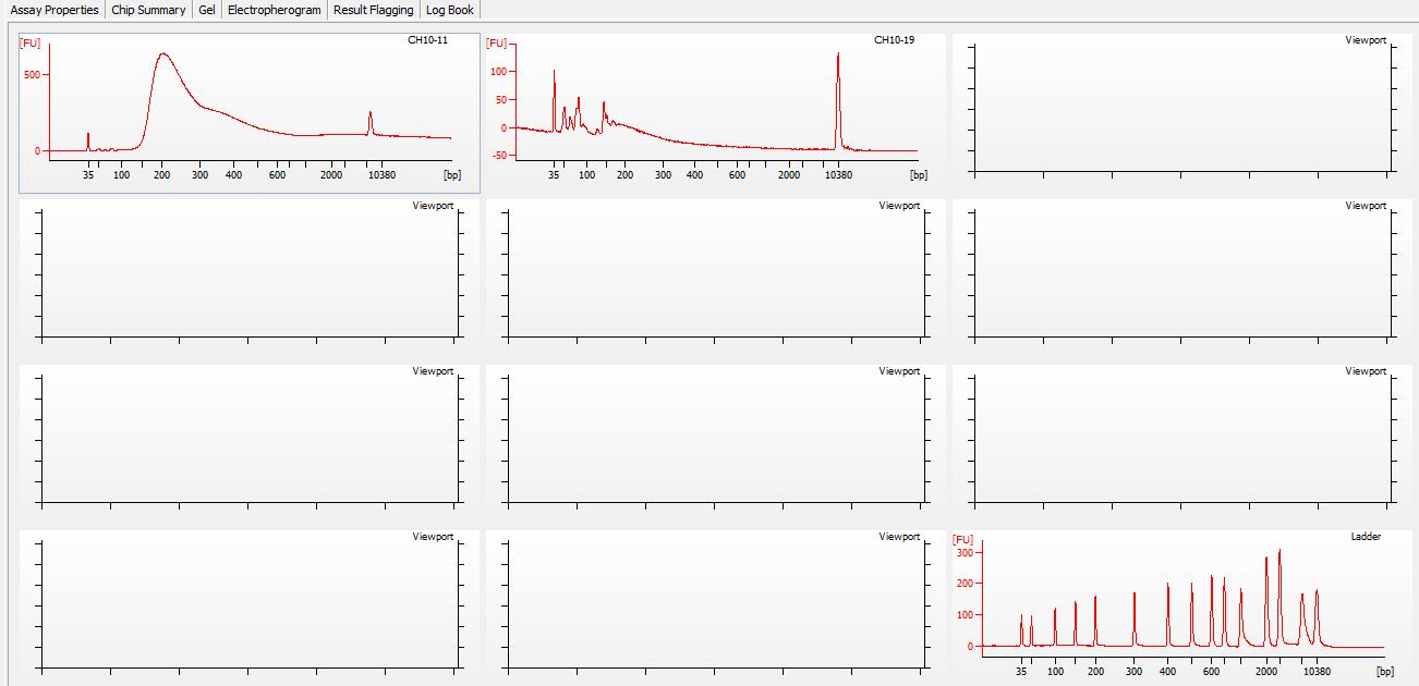 Bioanalyzer electrophergrams for all samples in DE72902486_2020-11-25_07-00-25
